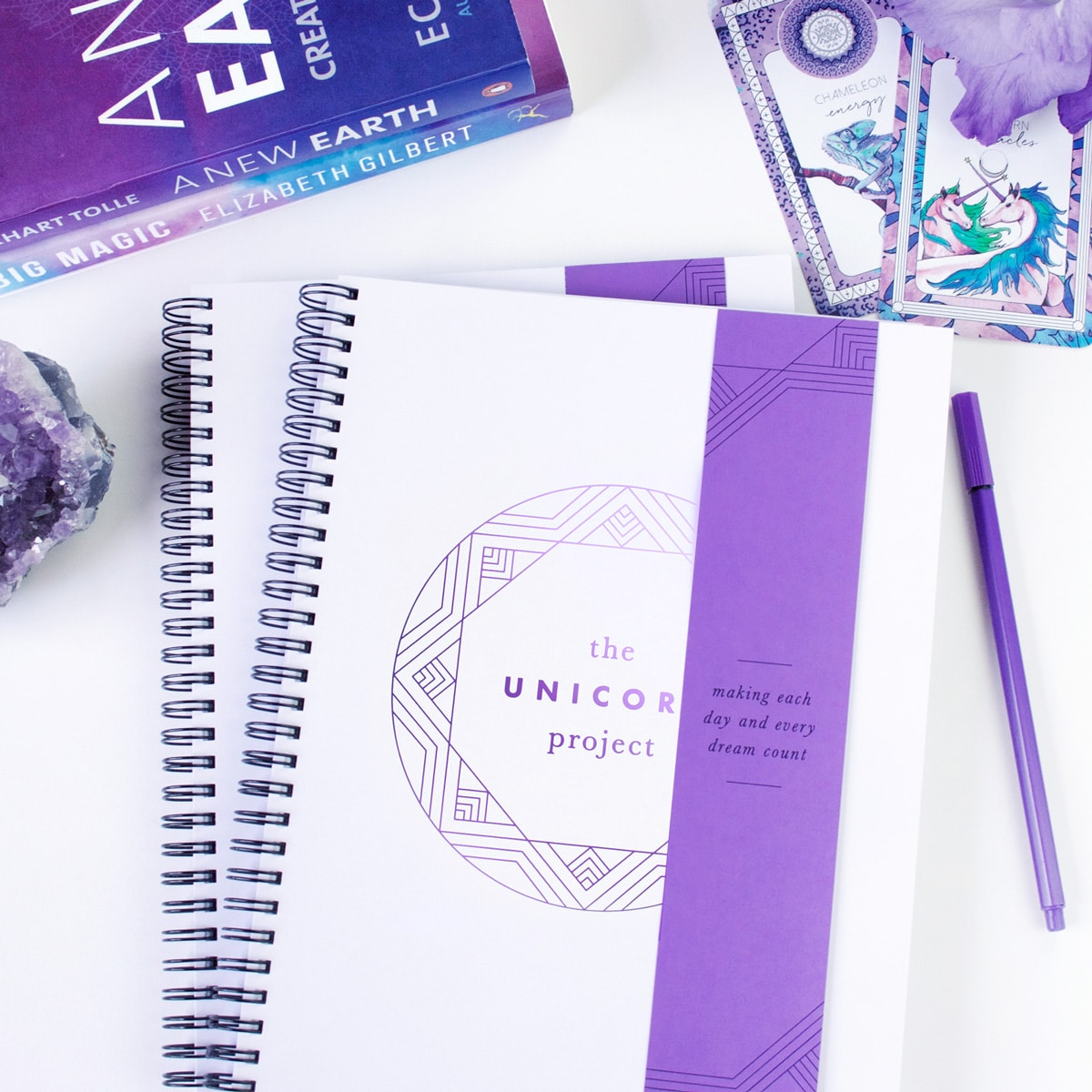 Unicorn Project Journal
