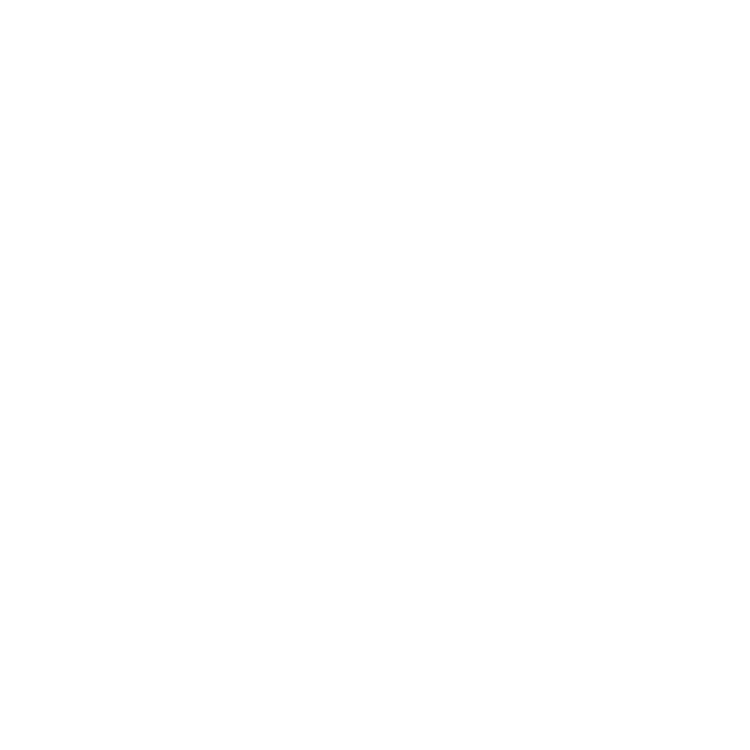 The Unicorn Project Journal